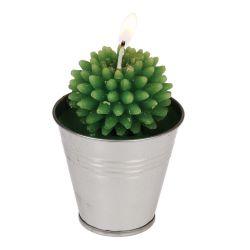 Bougie cactus dans son sceau en étain