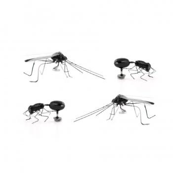 Magnet insectes x4