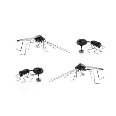 Magnet insectes x4