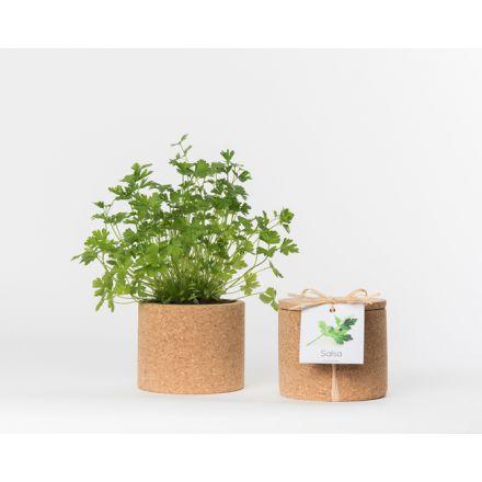 Pot en liège - Persil - Plante à faire pousser -