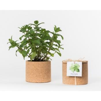 Pot en liège - Menthe - Plante à faire pousser -