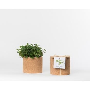 Pot en liège - Origan - Plante à faire pousser -