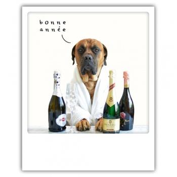 Carte pickmotion - Bonne année chien