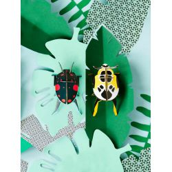 Petits insectes en 3D - Lady beetles - Studio Roof