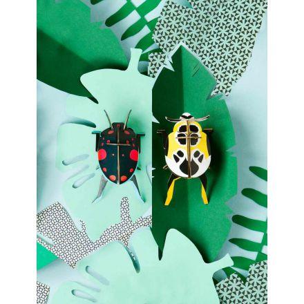 Petits insectes en 3D - Lady beetles - Studio Roof