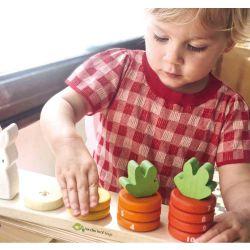 Compte carottes en bois Tender Leaf Toys