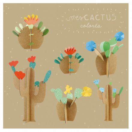 Mes cactus Pirouette Cachouète