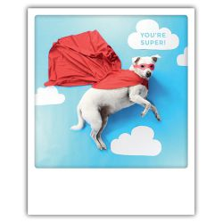 Carte pickmotion - You're super chien