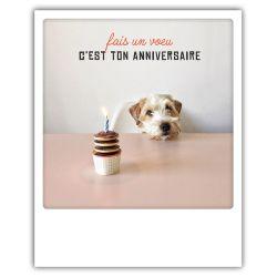 Carte pickmotion - Fais un voeu c'est ton anniversaire