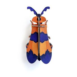 Insecte Bleu et orange en 3D - Winged beetle - Studio Roof