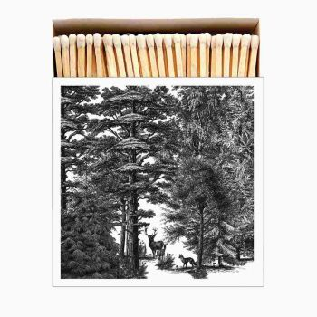 Grande boîte allumettes - Archivist - Enchanted forest