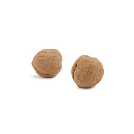 Gomme en forme de noix